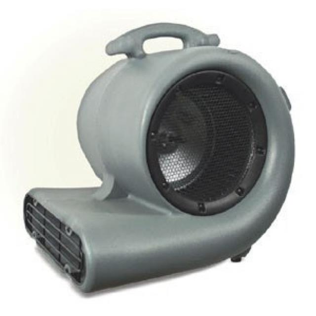 Where to find FAN, CARPET DRYER in Tacoma